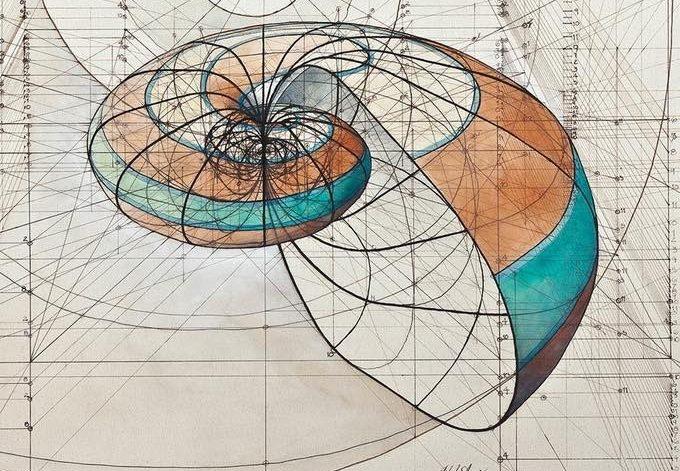 Disegno della sezione aurea realizzato da Rafael Araujo